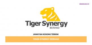 Permohonan Jawatan Kosong Terkini Tiger Synergy Berhad